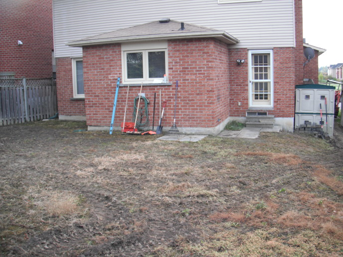 Existing patio slabs & steps
